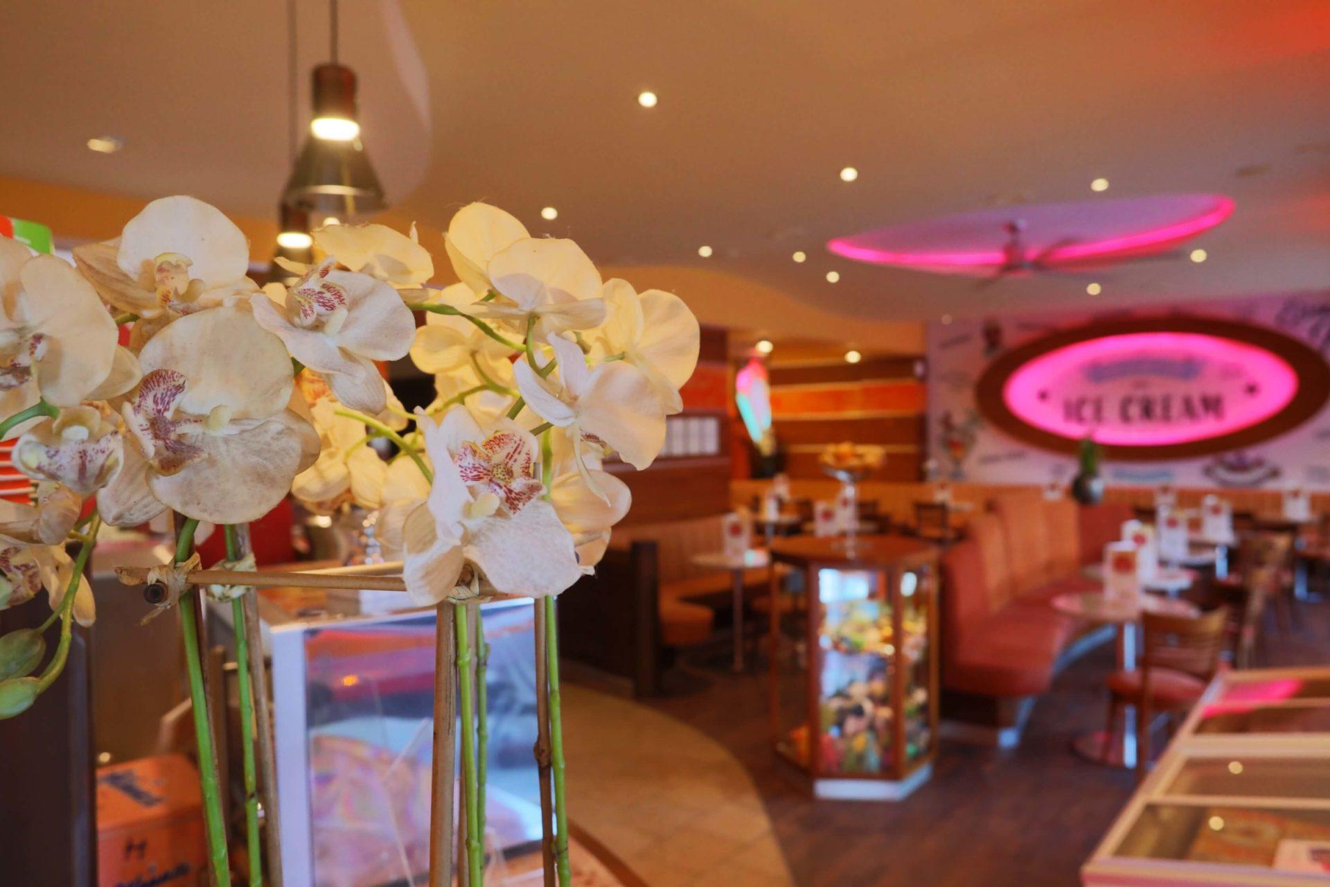 Orchideen im Inneren des Salons
